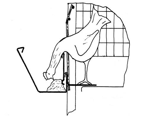 Как сделать клетку для бройлеров своими руками чертежи 92